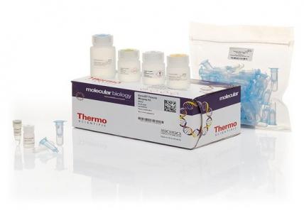 Thermo Scientific GeneJET Plasmid Miniprep Kit ...