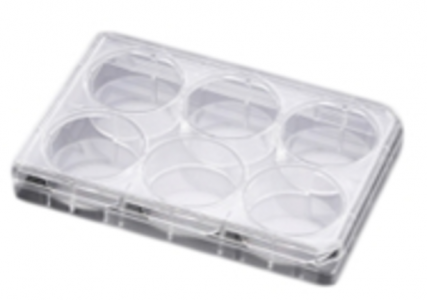 Falcon® PLATE 6W TC F-BTM W/LID PS 50/CASE