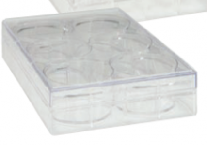 TRUELINE 6 WELL CLEAR, TISSUE CULTURE-TREATED MULTIPLE WELL PLATES, STERILE, 50/CASE