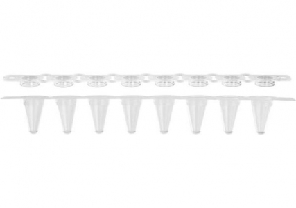 Axygen® 0.1 mL Low Profile Polypropylene Thin Wall PCR Tube Strips and Real Time Strip Caps, 8 Tubes and Caps/Strip, Clear, Nonsterile
